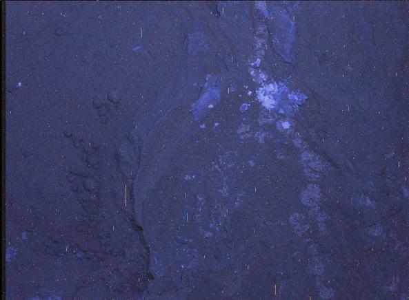 20130123-173709.jpg